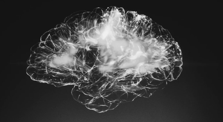 human brain on the black background